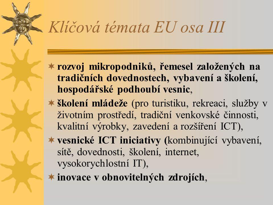 Klíčová témata EU osa III  rozvoj mikropodniků, řemesel založených na tradičních dovednostech, vybavení a školení, hospodářské podhoubí vesnic,  školení mládeže (pro turistiku, rekreaci, služby v životním prostředí, tradiční venkovské činnosti, kvalitní výrobky, zavedení a rozšíření ICT),  vesnické ICT iniciativy (kombinující vybavení, sítě, dovednosti, školení, internet, vysokorychlostní IT),  inovace v obnovitelných zdrojích,
