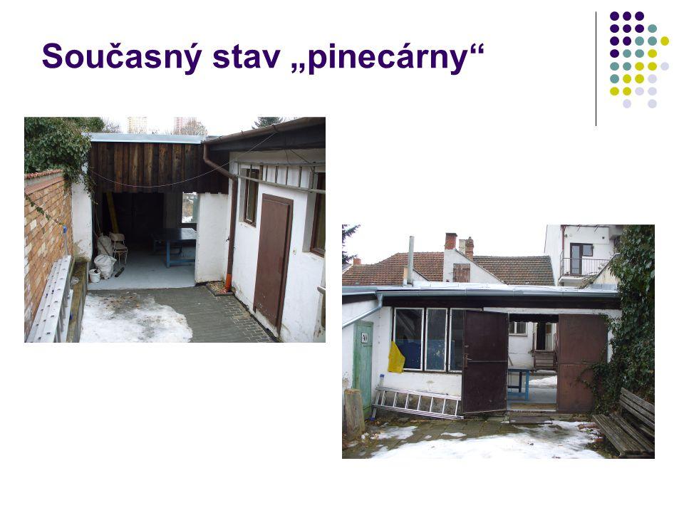 """Současný stav """"pinecárny"""