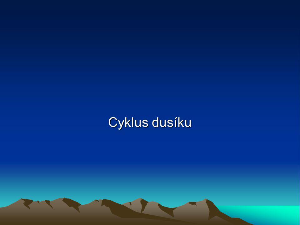 Cyklus dusíku