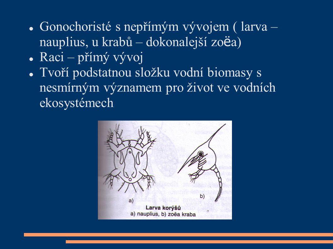  Gonochoristé s nepřímým vývojem ( larva – nauplius, u krabů – dokonalejší zo ë a)  Raci – přímý vývoj  Tvoří podstatnou složku vodní biomasy s nes