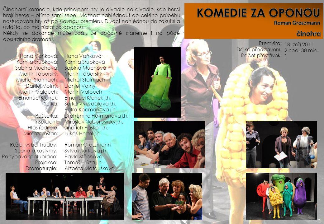 Premiéra: Délka představení: Počet přestávek: Režie, výběr hudby: Scéna a kostýmy: Pohybová spolupráce: Projekce: Dramaturgie: Roman Groszmann Sylva M