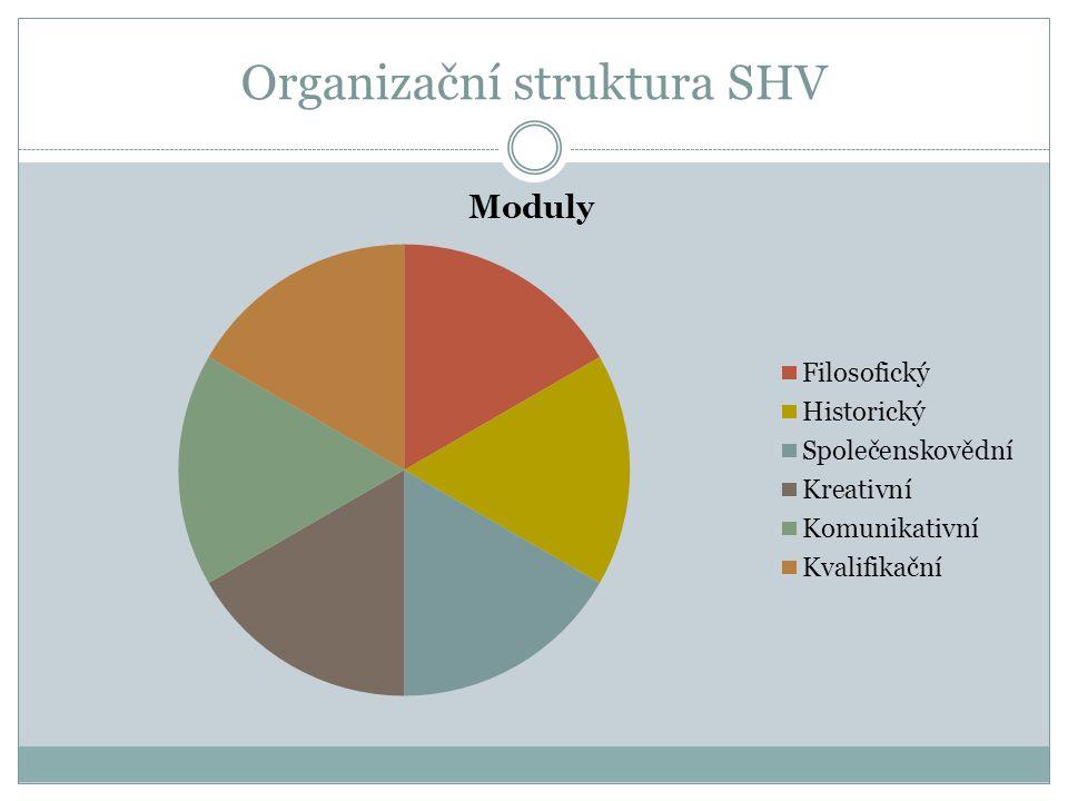 Organizační struktura SHV