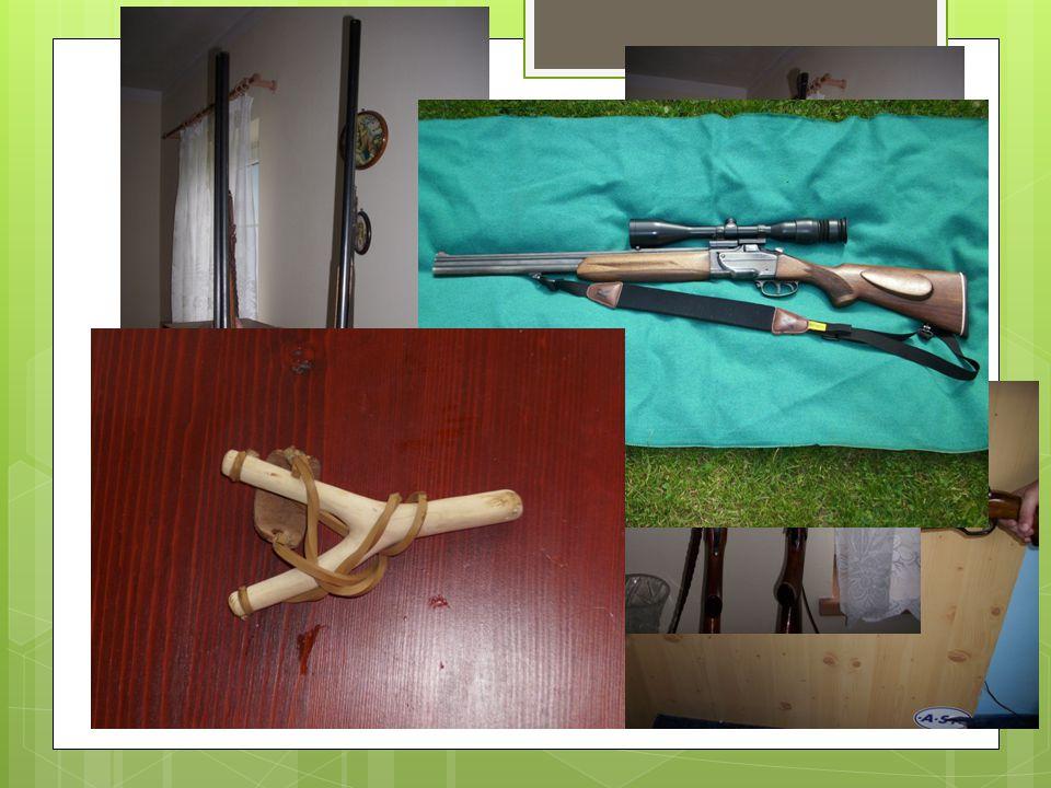 Střelectví  Střelné zbraně 1.Chladné – prak 2. Plynové – vzduchovka  Palné zbraně 1.