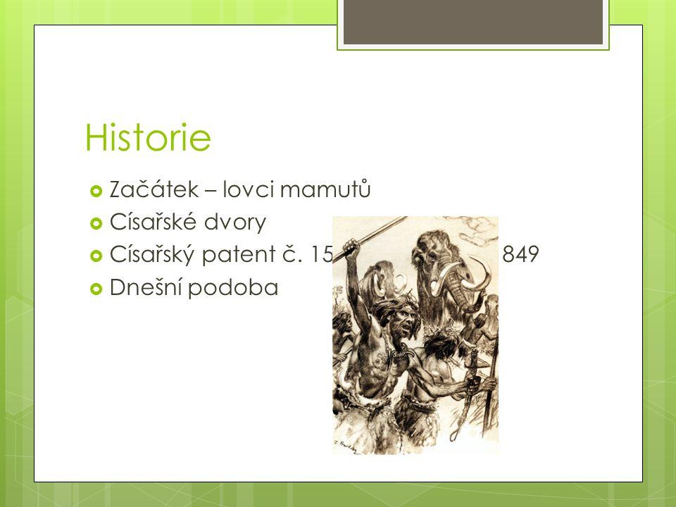 Historie  Začátek – lovci mamutů  Císařské dvory  Císařský patent č.