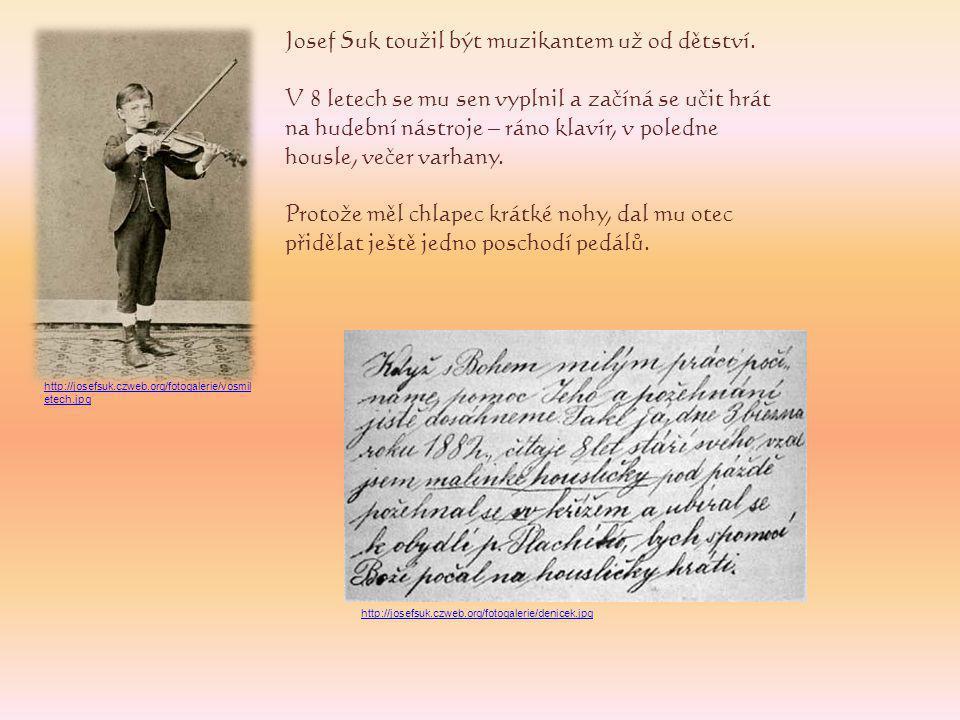 V roce 1885 byl přijat na pražskou konzervatoř.