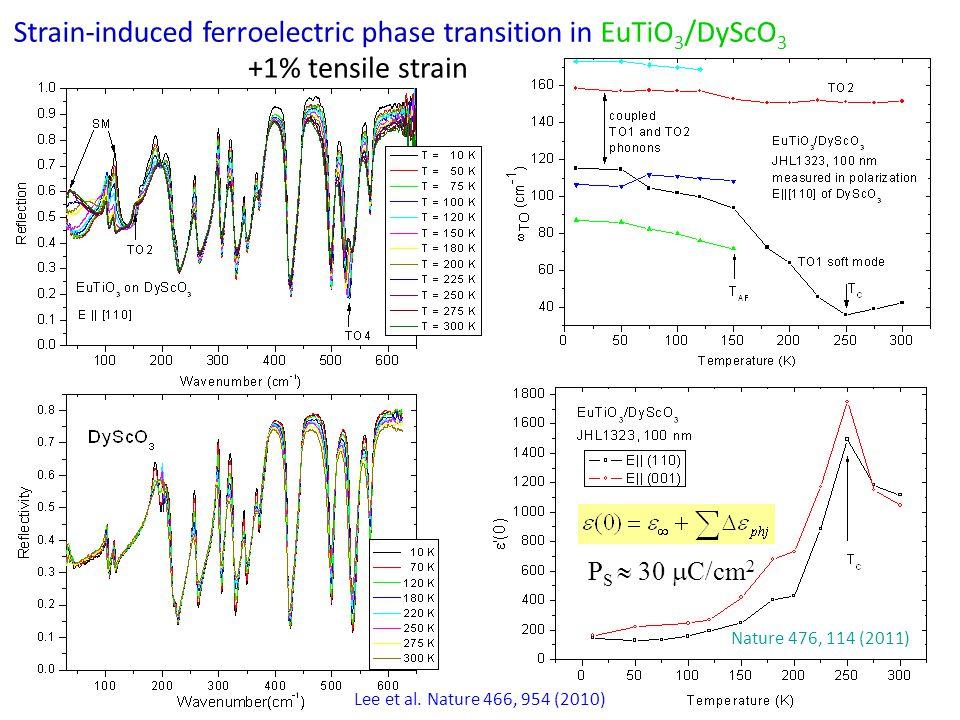 Strain induced ferromagnetism in tensile strained EuTiO 3 /DyScO 3 Lee et al.