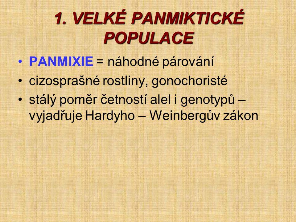 1. VELKÉ PANMIKTICKÉ POPULACE •PANMIXIE = náhodné párování •cizosprašné rostliny, gonochoristé •stálý poměr četností alel i genotypů – vyjadřuje Hardy