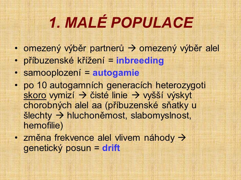 1. MALÉ POPULACE •omezený výběr partnerů  omezený výběr alel •příbuzenské křížení = inbreeding •samooplození = autogamie •po 10 autogamních generacíc