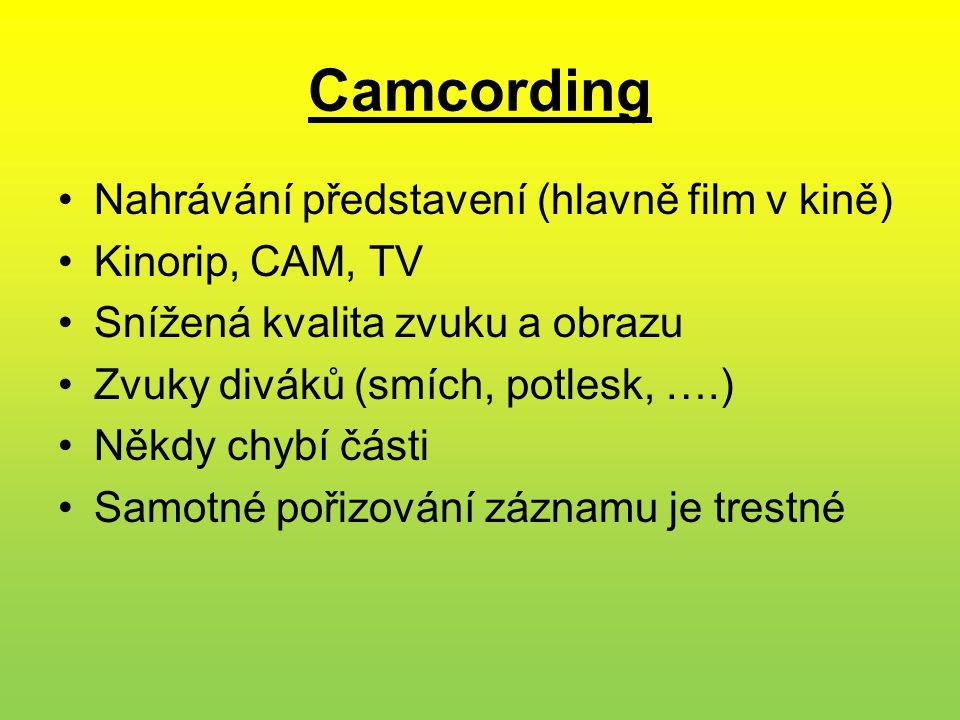 Camcording •Nahrávání představení (hlavně film v kině) •Kinorip, CAM, TV •Snížená kvalita zvuku a obrazu •Zvuky diváků (smích, potlesk, ….) •Někdy chybí části •Samotné pořizování záznamu je trestné