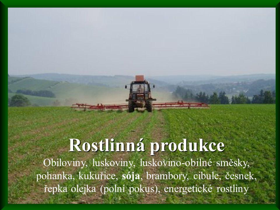 Rostlinná produkce Rostlinná produkce Obiloviny, luskoviny, luskovino-obilné směsky, pohanka, kukuřice, sója, brambory, cibule, česnek, řepka olejka (polní pokus), energetické rostliny