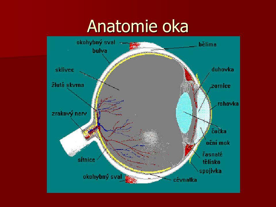 Oční vady - astigmatismus  Nepravidelný tvar asymetrické rohovky soustřeďuje paprsky nerovnoměrně.