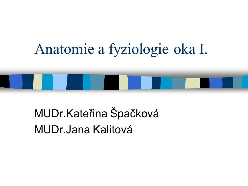 Anatomie a fyziologie oka I. MUDr.Kateřina Špačková MUDr.Jana Kalitová