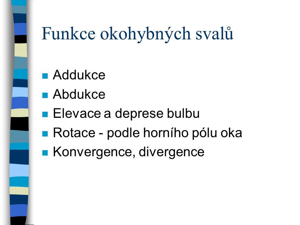 Funkce okohybných svalů n Addukce n Abdukce n Elevace a deprese bulbu n Rotace - podle horního pólu oka n Konvergence, divergence