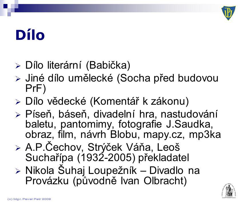  Dílo literární (Babička)  Jiné dílo umělecké (Socha před budovou PrF)  Dílo vědecké (Komentář k zákonu)  Píseň, báseň, divadelní hra, nastudování baletu, pantomimy, fotografie J.Saudka, obraz, film, návrh Blobu, mapy.cz, mp3ka  A.P.Čechov, Strýček Váňa, Leoš Suchařípa (1932-2005) překladatel  Nikola Šuhaj Loupežník – Divadlo na Provázku (původně Ivan Olbracht)