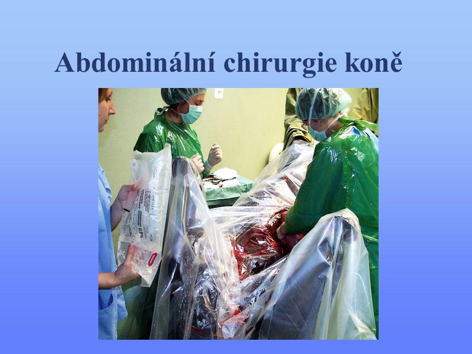 Indikace laparotomie •intestinální chirurgie •ovariektomie •repozice torze dělohy •císařský řez •uroperitoneum •kryptorchidní kastrace