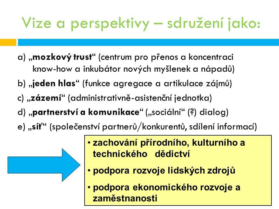 """Vize a perspektivy – sdružení jako: a) """"mozkový trust"""" (centrum pro přenos a koncentraci know-how a inkubátor nových myšlenek a nápadů) b) """"jeden hlas"""
