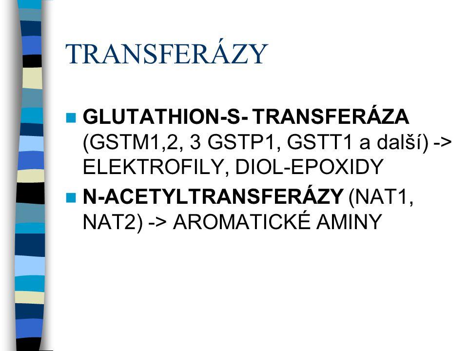 TRANSFERÁZY  GLUTATHION-S- TRANSFERÁZA (GSTM1,2, 3 GSTP1, GSTT1 a další) -> ELEKTROFILY, DIOL-EPOXIDY  N-ACETYLTRANSFERÁZY (NAT1, NAT2) -> AROMATICK