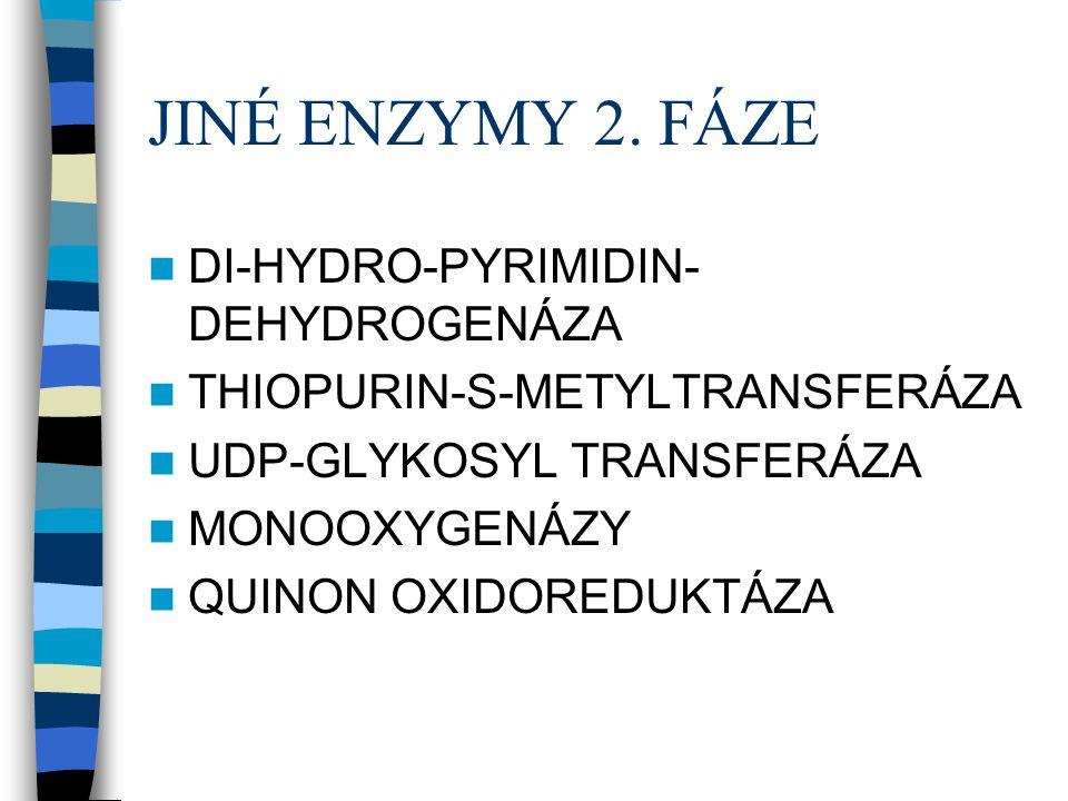 JINÉ ENZYMY 2. FÁZE  DI-HYDRO-PYRIMIDIN- DEHYDROGENÁZA  THIOPURIN-S-METYLTRANSFERÁZA  UDP-GLYKOSYL TRANSFERÁZA  MONOOXYGENÁZY  QUINON OXIDOREDUKT