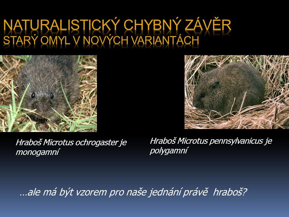 Hraboš Microtus ochrogaster je monogamní Hraboš Microtus pennsylvanicus je polygamní …ale má být vzorem pro naše jednání právě hraboš?