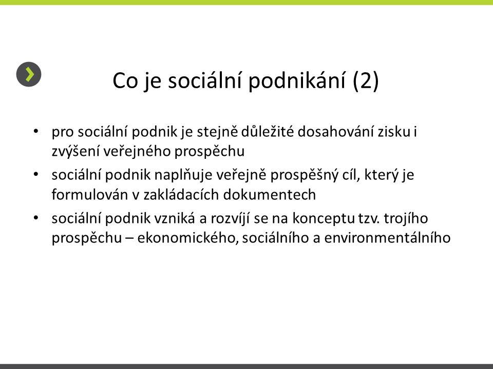 Co je sociální podnikání (2) • pro sociální podnik je stejně důležité dosahování zisku i zvýšení veřejného prospěchu • sociální podnik naplňuje veřejn