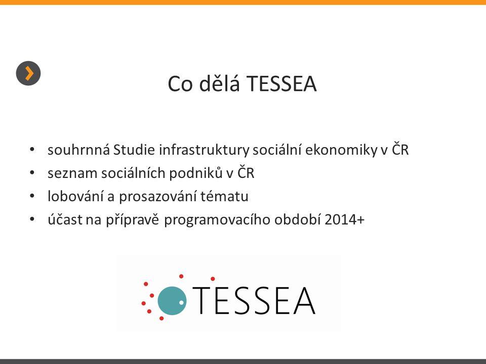 Co dělá TESSEA • souhrnná Studie infrastruktury sociální ekonomiky v ČR • seznam sociálních podniků v ČR • lobování a prosazování tématu • účast na př