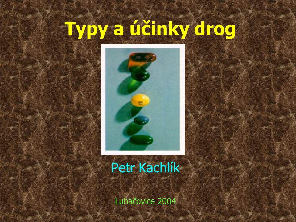 Typy a účinky drog Petr Kachlík Luhačovice 2004