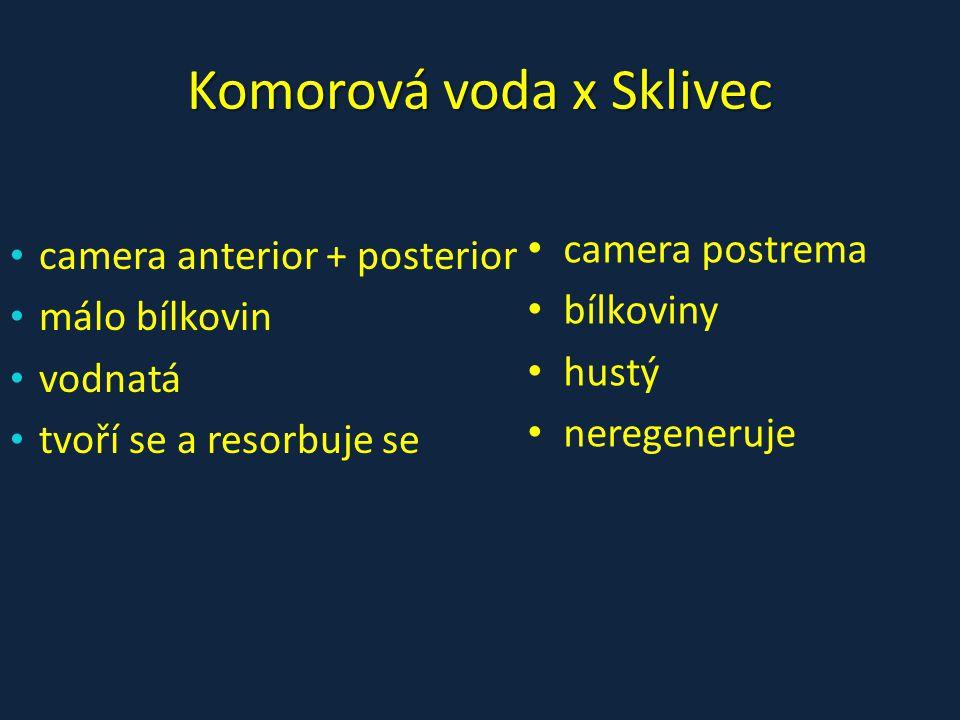 Komorová voda x Sklivec • camera postrema • bílkoviny • hustý • neregeneruje • camera anterior + posterior • málo bílkovin • vodnatá • tvoří se a reso