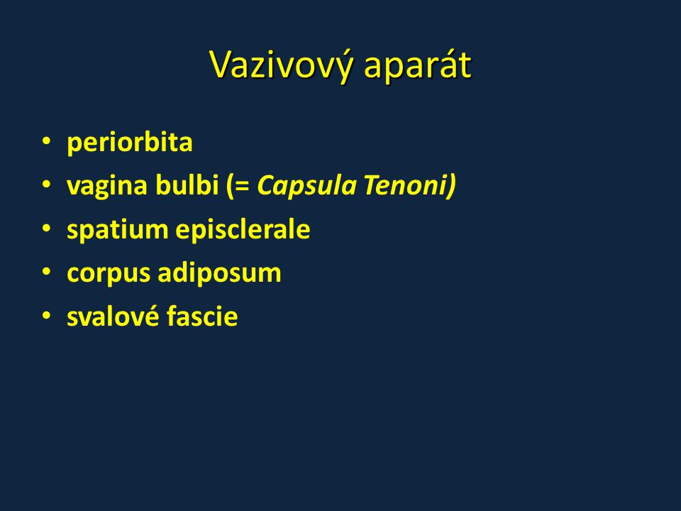 Vazivový aparát • periorbita • vagina bulbi (= Capsula Tenoni) • spatium episclerale • corpus adiposum • svalové fascie