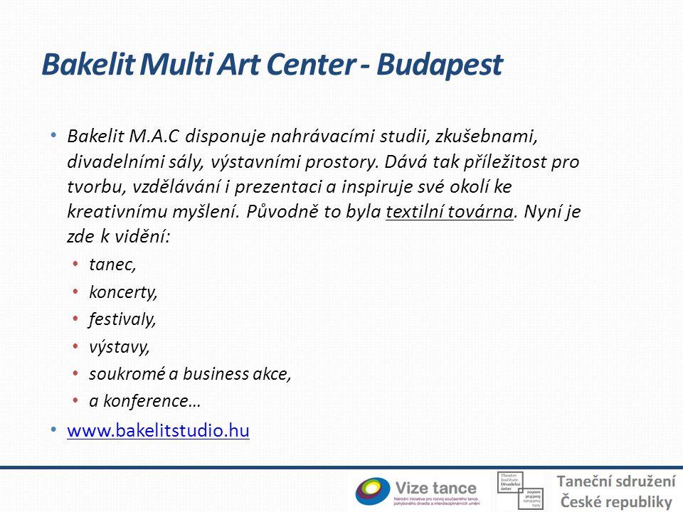 • Bakelit M.A.C disponuje nahrávacími studii, zkušebnami, divadelními sály, výstavními prostory.