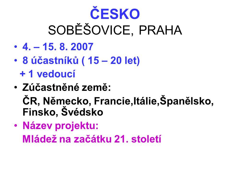 ČESKO SOBĚŠOVICE, PRAHA •4. – 15. 8. 2007 •8 účastníků ( 15 – 20 let) + 1 vedoucí •Zúčastněné země: ČR, Německo, Francie,Itálie,Španělsko, Finsko, Švé