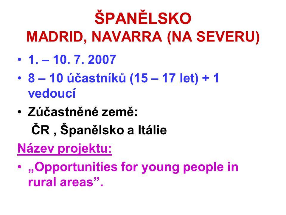 ŠPANĚLSKO MADRID, NAVARRA (NA SEVERU) •1. – 10. 7. 2007 •8 – 10 účastníků (15 – 17 let) + 1 vedoucí •Zúčastněné země: ČR, Španělsko a Itálie Název pro