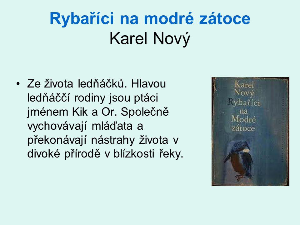 Rybaříci na modré zátoce Karel Nový •Ze života ledňáčků. Hlavou ledňáččí rodiny jsou ptáci jménem Kik a Or. Společně vychovávají mláďata a překonávají