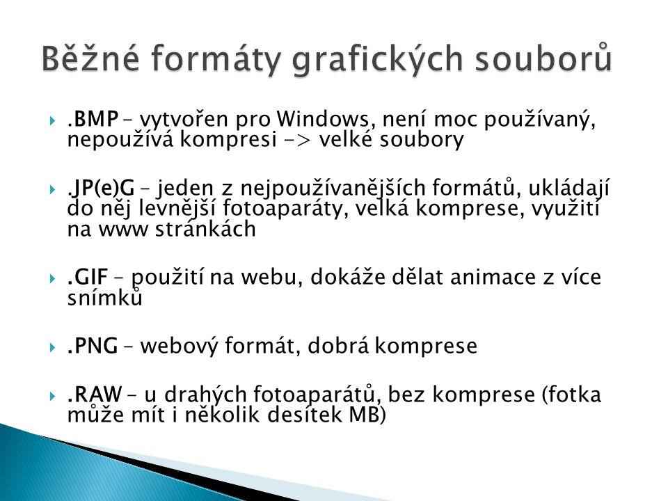 .BMP – vytvořen pro Windows, není moc používaný, nepoužívá kompresi -> velké soubory .JP(e)G – jeden z nejpoužívanějších formátů, ukládají do něj levnější fotoaparáty, velká komprese, využití na www stránkách .GIF – použití na webu, dokáže dělat animace z více snímků .PNG – webový formát, dobrá komprese .RAW – u drahých fotoaparátů, bez komprese (fotka může mít i několik desítek MB)