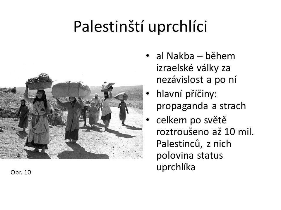 Palestinští uprchlíci • al Nakba – během izraelské války za nezávislost a po ní • hlavní příčiny: propaganda a strach • celkem po světě roztroušeno až