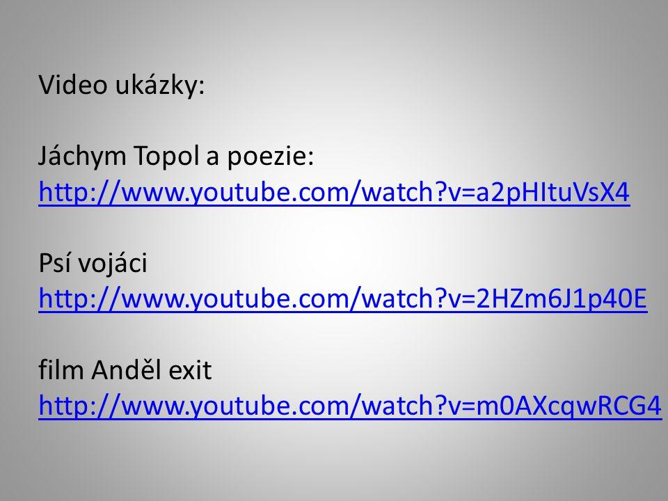 Seznam literatury a pramenů http://cs.wikipedia.org/wiki/Jáchym_Topol Jáchym Topol.