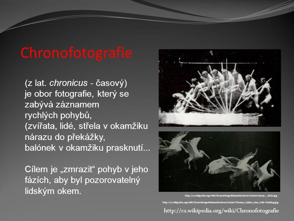 """Chronofotografie http://cs.wikipedia.org/wiki/Chronofotografie#mediaviewer/Soubor:Marey_-_birds.jpg http://cs.wikipedia.org/wiki/Chronofotografie#mediaviewer/Soubor:Schuss_gluehbirne.jpg Série sekvenčních obrázků byly impulsem k rozvoji """"pohyblivých obrazů kinofilmu."""