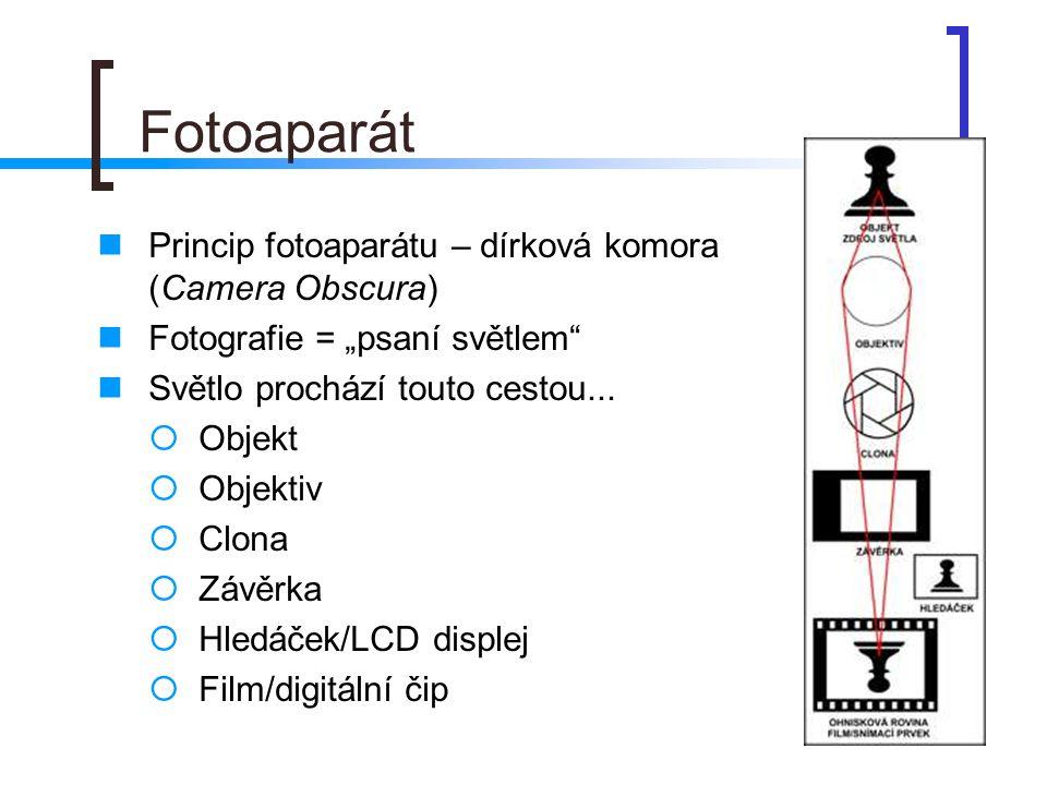 Formáty bitmapových obrázků  BMP = bitová mapa (věrnost obrázku, ale velký soubor)  JPG (JPEG) - komprimovaný, tj.
