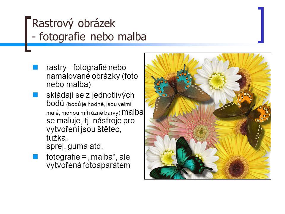 Rastrový obrázek - fotografie nebo malba  rastry - fotografie nebo namalované obrázky (foto nebo malba)  skládají se z jednotlivých bodů (bodů je hodně, jsou velmi malé, mohou mít různé barvy) malba se maluje, tj.