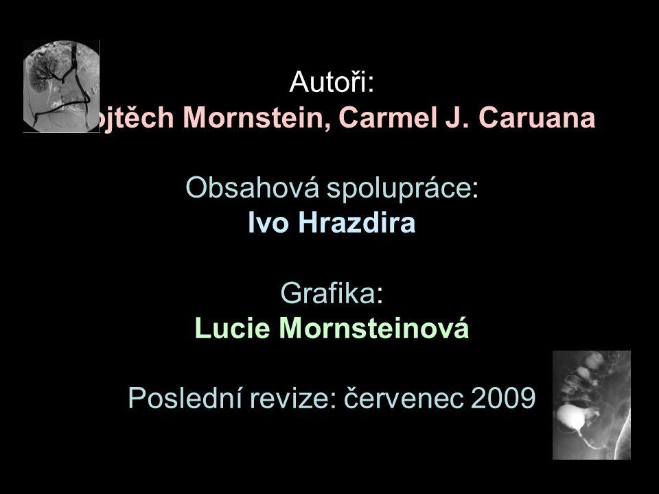 Autoři: Vojtěch Mornstein, Carmel J.