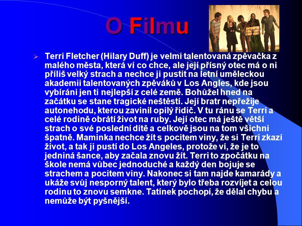 O Filmu  Terri Fletcher (Hilary Duff) je velmi talentovaná zpěvačka z malého města, která ví co chce, ale její přísný otec má o ni příliš velký strach a nechce ji pustit na letní uměleckou akademii talentovaných zpěváků v Los Angles, kde jsou vybíráni jen ti nejlepší z celé země.