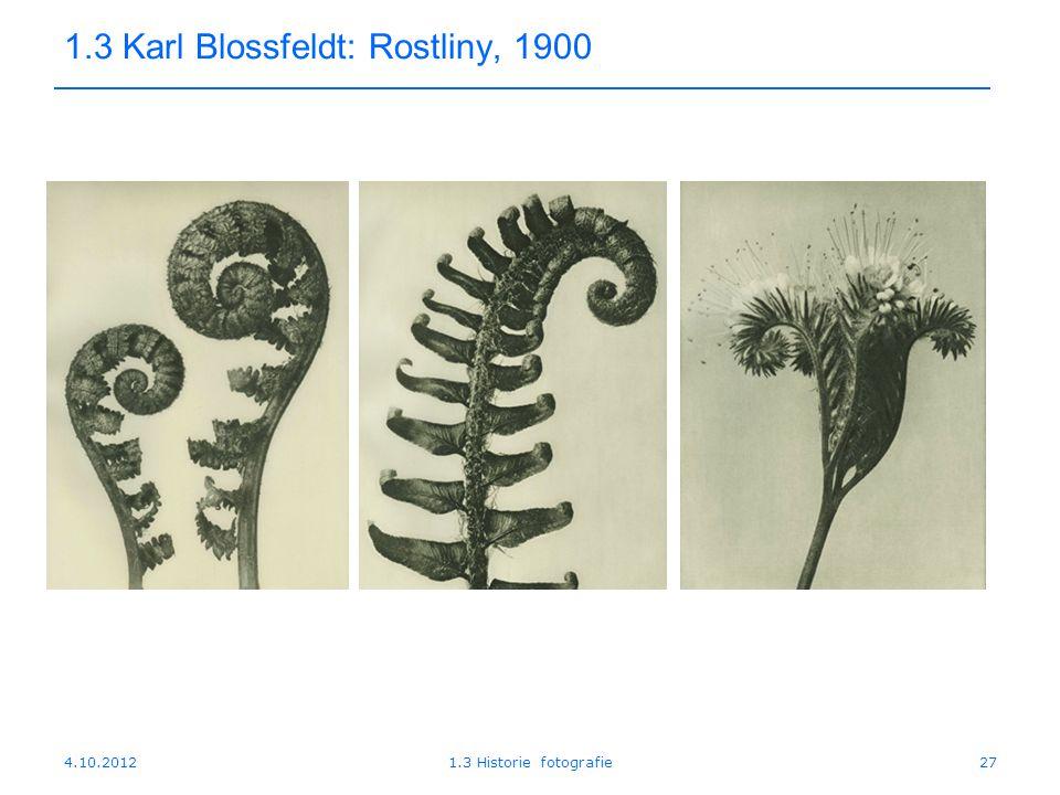 4.10.20121.3 Historie fotografie27 1.3 Karl Blossfeldt: Rostliny, 1900