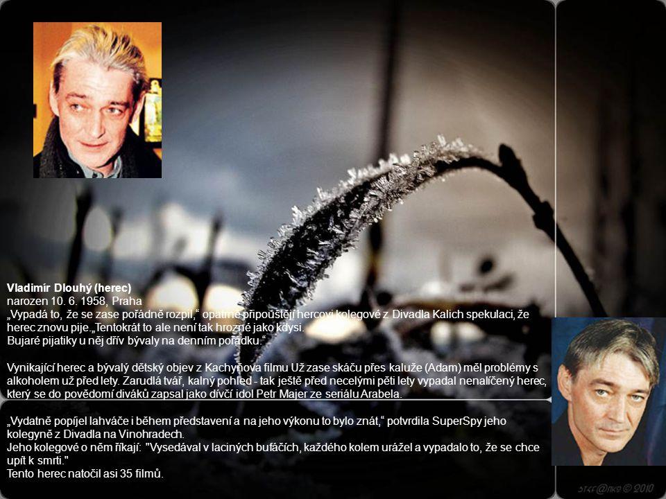 Štěpánka Haničincová (herečka, moderát.) narozena 30. 9. 1931, zemřela 27. 10. 1999 Dětmi milovaná průvodkyně pohádkovým světem Štěpánka Haničincová z