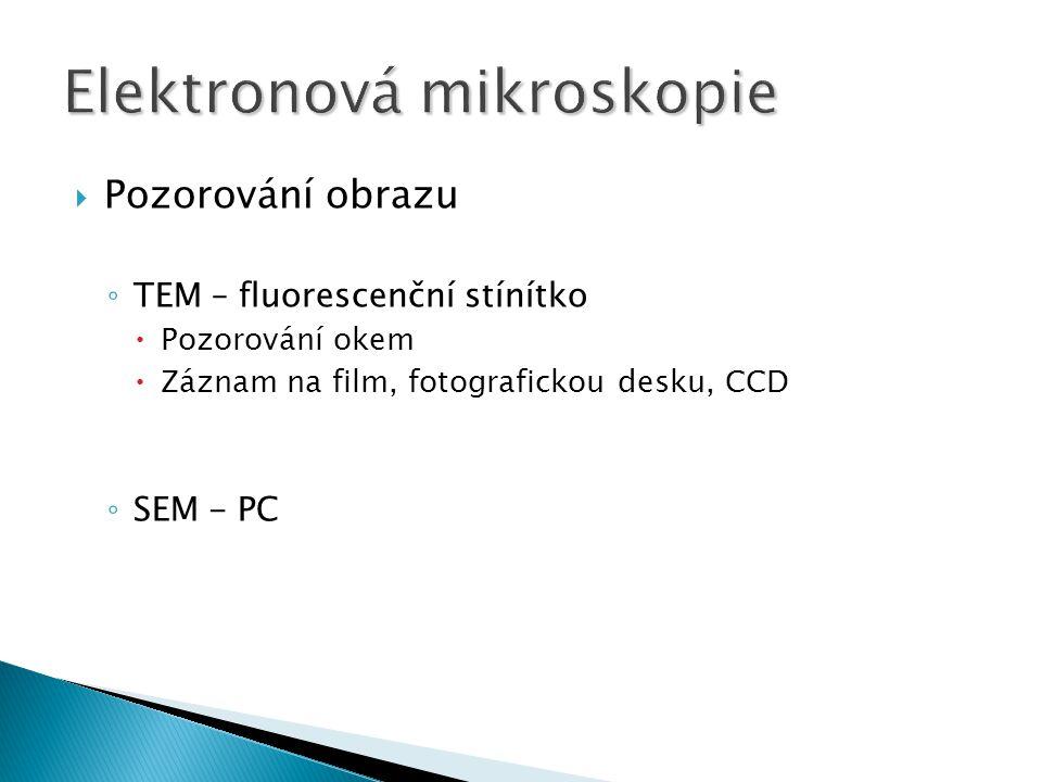  Pozorování obrazu ◦ TEM – fluorescenční stínítko  Pozorování okem  Záznam na film, fotografickou desku, CCD ◦ SEM - PC