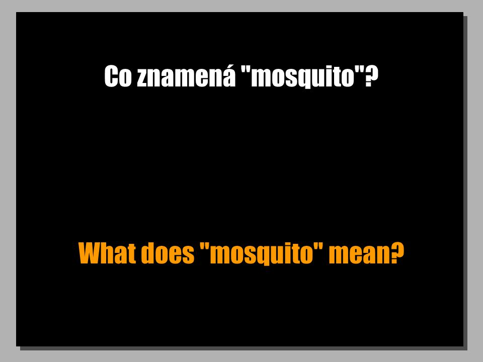 Co znamená mosquito What does mosquito mean