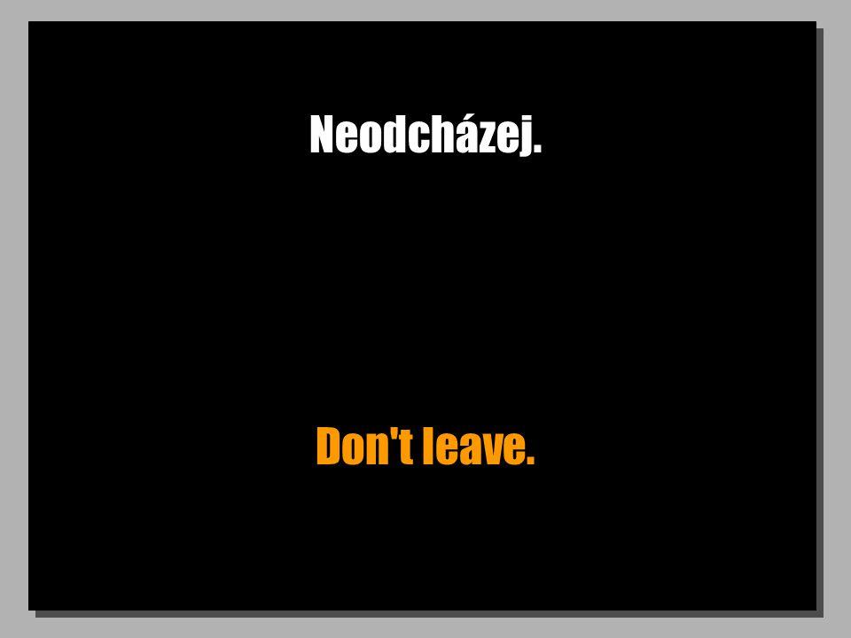 Neodcházej. Don t leave.