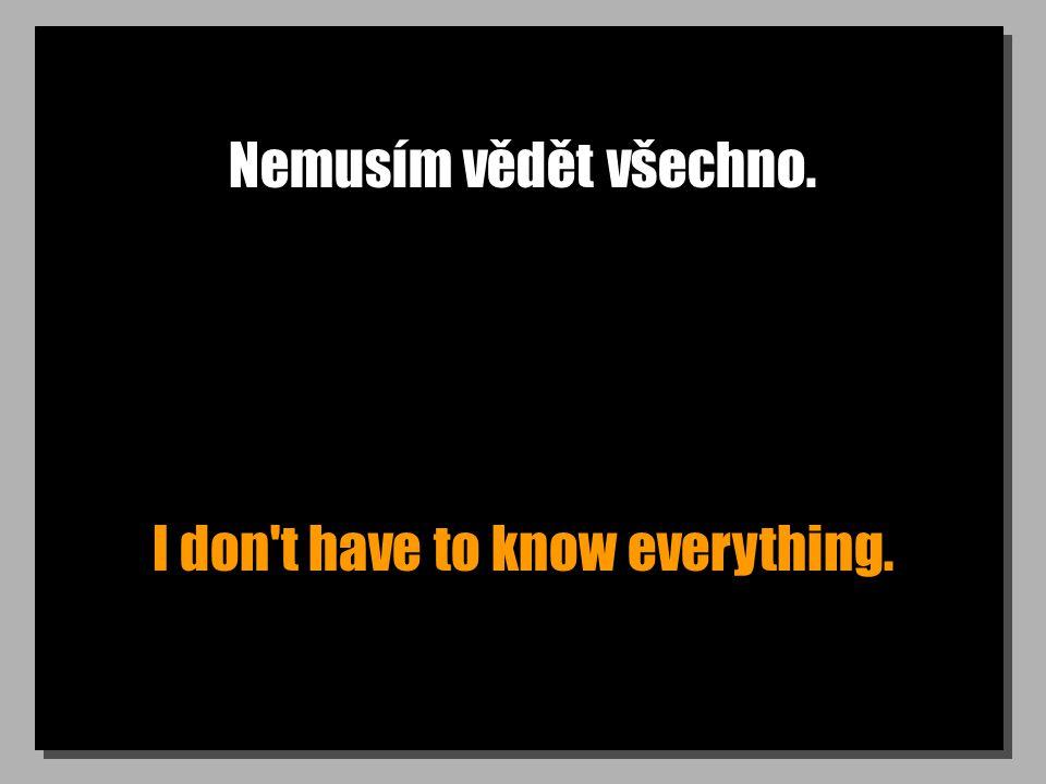 Nemusím vědět všechno. I don t have to know everything.