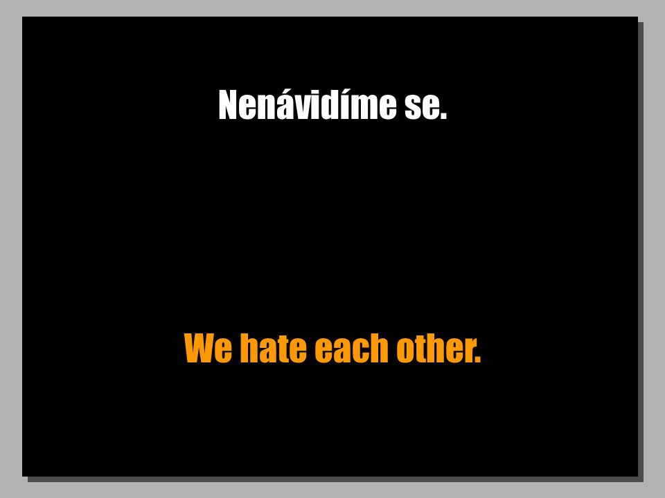 Nenávidíme se. We hate each other.