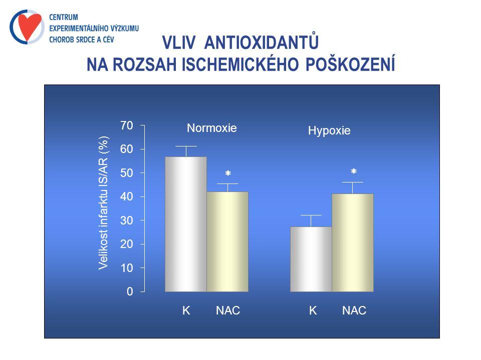 VLIV ANTIOXIDANTŮ NA ROZSAH ISCHEMICKÉHO POŠKOZENÍ K 0 10 20 30 40 50 60 70 Velikost infarktu IS/AR (%) Normoxie Hypoxie NAC K  