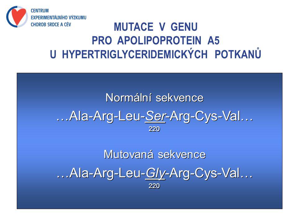 MUTACE V GENU PRO APOLIPOPROTEIN A5 U HYPERTRIGLYCERIDEMICKÝCH POTKANŮ Normální sekvence …Ala-Arg-Leu-Ser-Arg-Cys-Val… 220 Mutovaná sekvence …Ala-Arg-