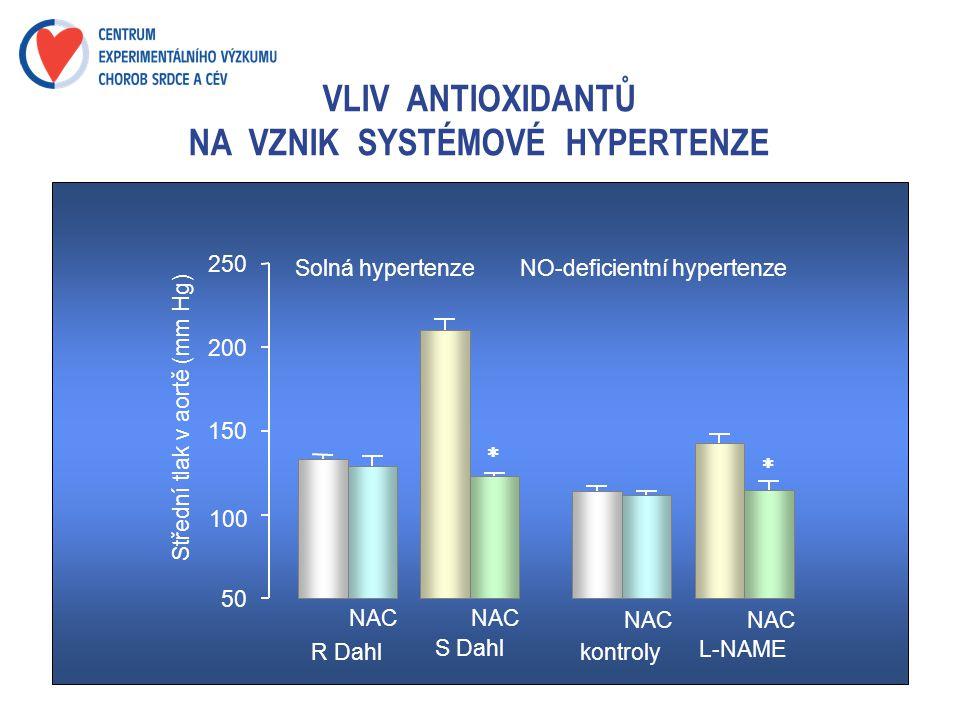 VLIV ANTIOXIDANTŮ NA VZNIK SYSTÉMOVÉ HYPERTENZE Solná hypertenzeNO-deficientní hypertenze 50 100 150 200 250 Střední tlak v aortě (mm Hg) NAC R Dahl S